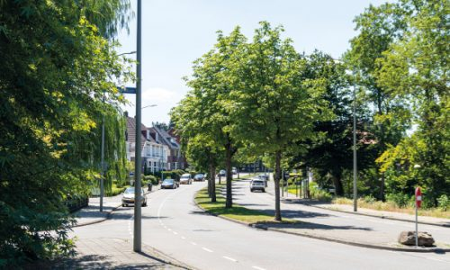 Molenbergpark - 5 - Molenberglaan - ilse
